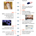 Consumer Report History of Antibiotic Overuse